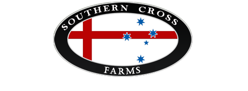 Southern Cross Farms – Breeders of Premium Quality Shires, Percheron & Warmblood Horses